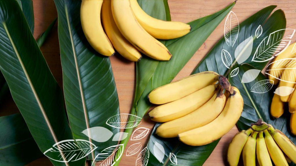 バナナ 口コミ うつ病 効果